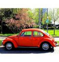 Volkswagen BEETLE – BETTLE – BOXER – KAFER – BUG 1303s