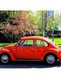 Volkswagen BEETLE – BETTLE – BOXER – KAFER – BUG 1303s